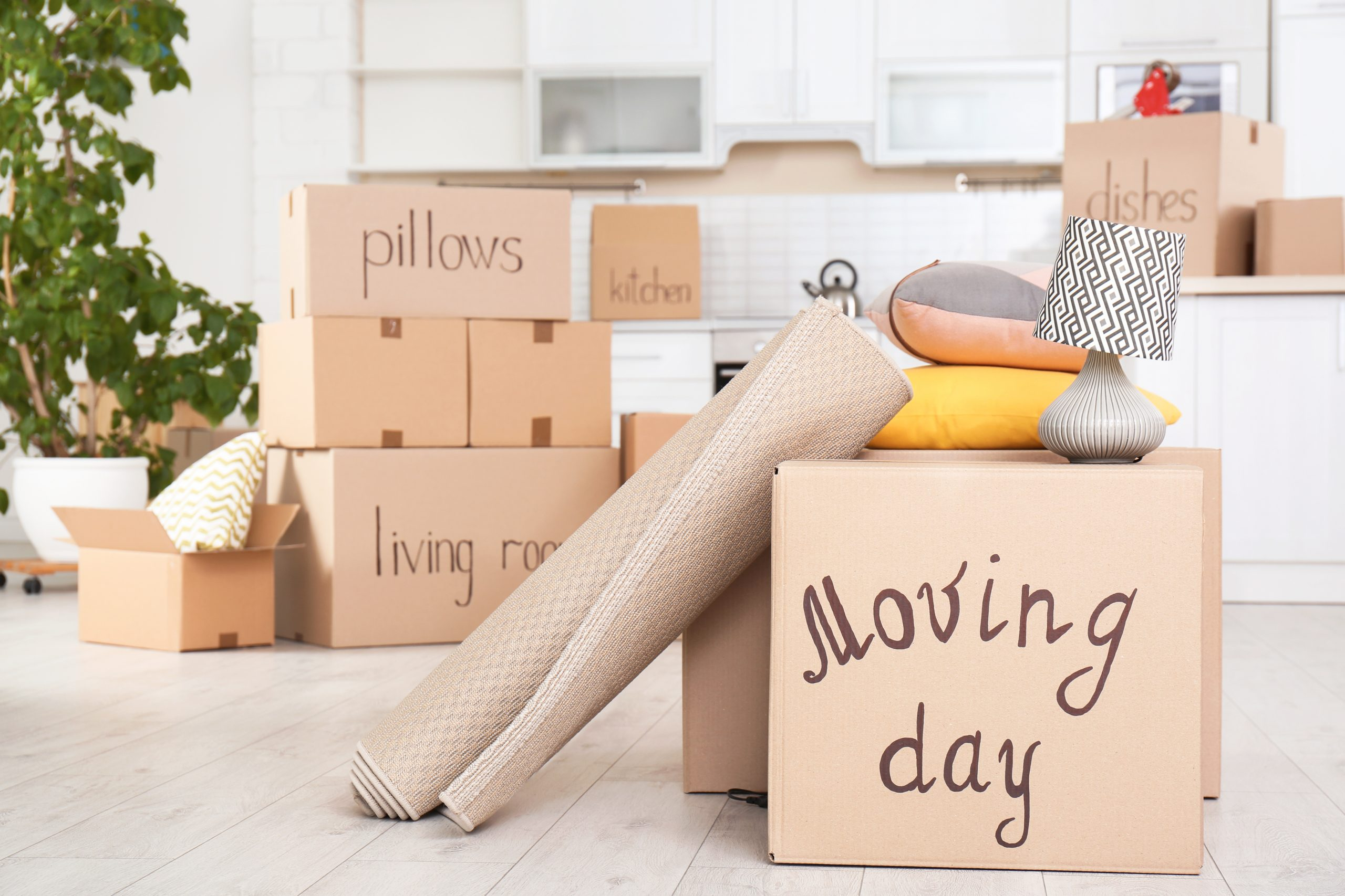 5 Tips for Moving Day