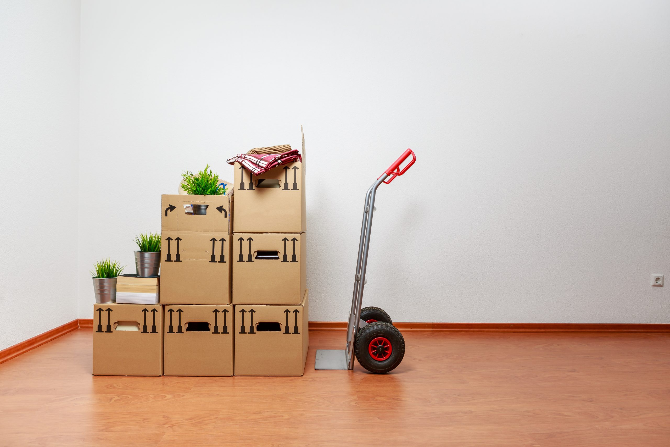 What Qualities Should I Look For in A Mover?